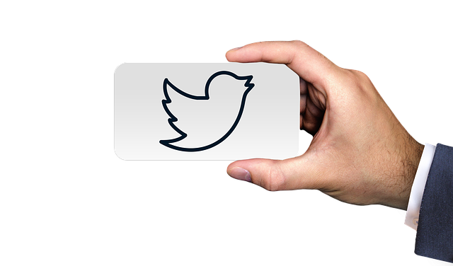 use Twitter for Customer Support
