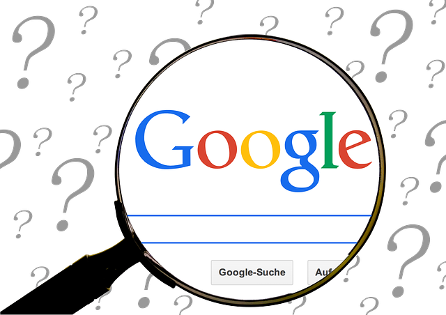 What questions are people asking Google in relation to your business?